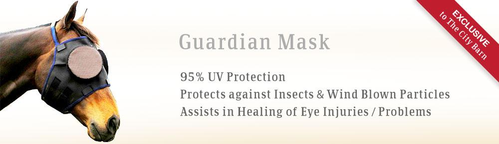 bslide-guardian-mask.jpg
