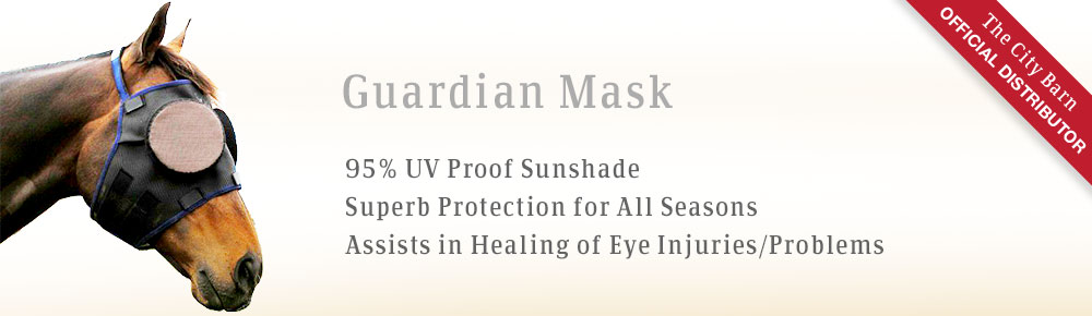bslide-guardian-mask4.jpg